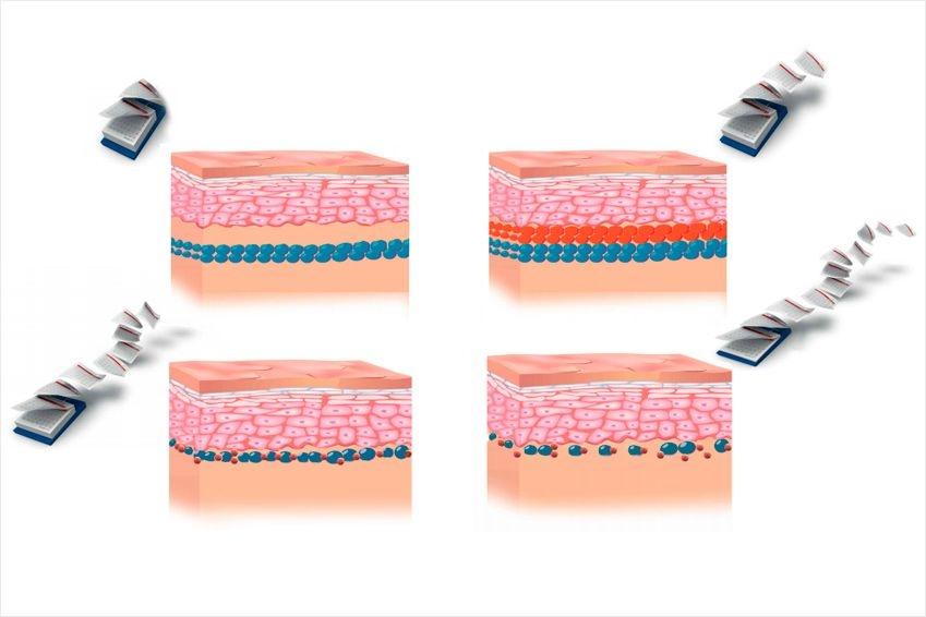 Curso experto técnico rehabilitador Micropigmentación & Microblading